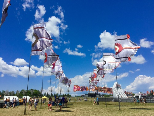WayHome Flags